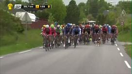 2016 Tour of Norway - Stage 4 Extended Highlights