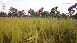 2016 Tour of Hainan - Stage 4 Short Highlights