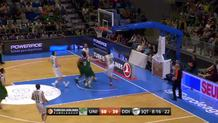 Bjelica Fake and Finish