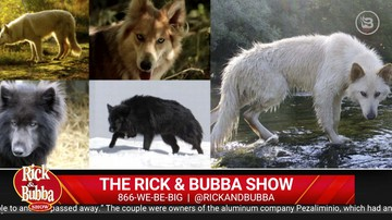 Daily Best of Feb. 20 | Rick & Bubba