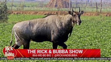 Daily Best of March 26 | Rick & Bubba