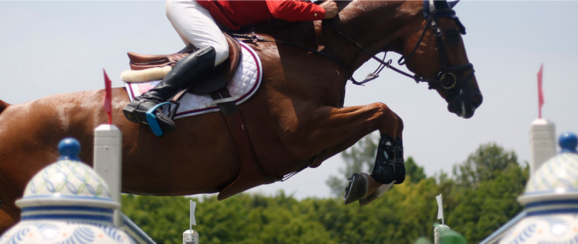 Aubepines Fei 1: FEI.tv -FEI Nations Cup™ Jumping 2017