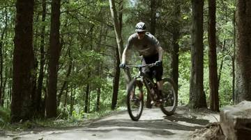Steve Peat Downhill Mountain Bike