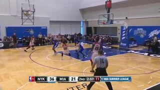 HIGHLIGHTS: Matt Williams Summer League (Heat vs. Knicks)